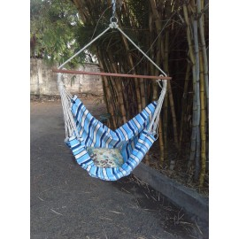 Buy Cool Blue Canvas Swing for Adults Online in India